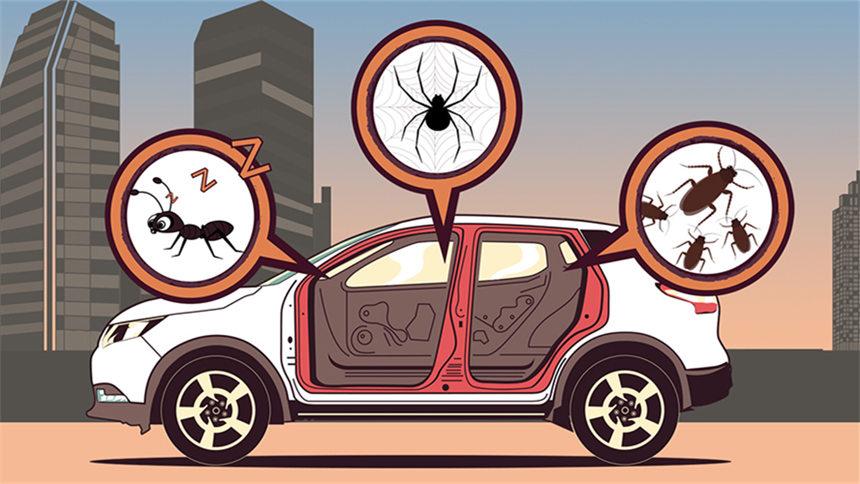 """视知车学院第128期:车里有座""""疯狂动物城""""该怎么办?这"""