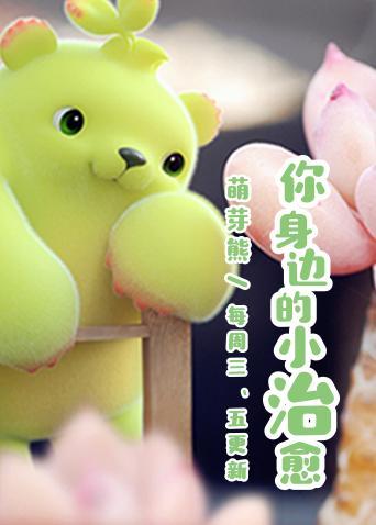 萌芽熊童子 第二季